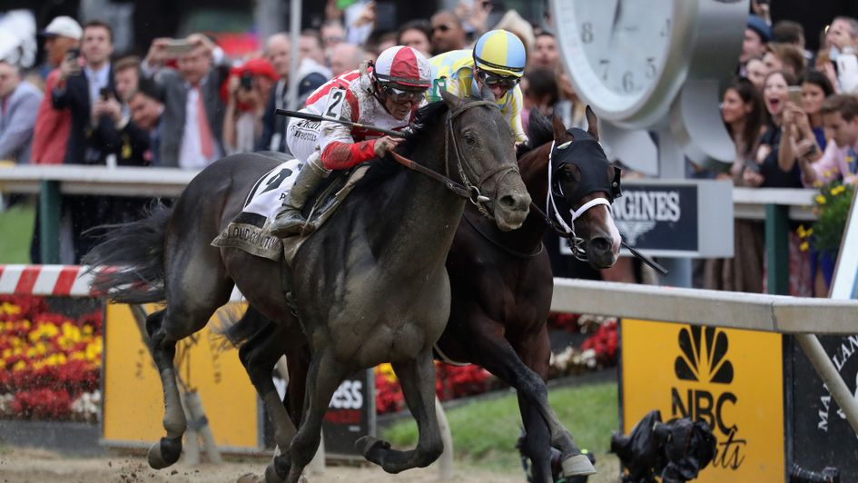 Cloud Computing takes Preakness as Derby victor  Always Dreaming fades
