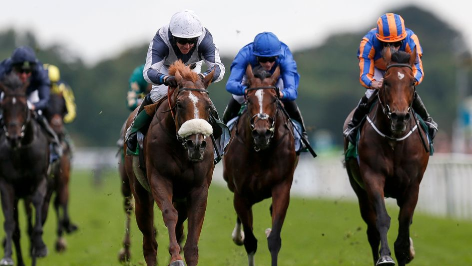 Seven to line up in Juddmonte