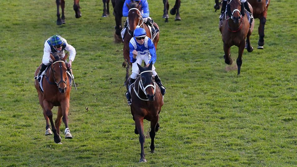 Winx impresses in training ahead of shot at win No.20
